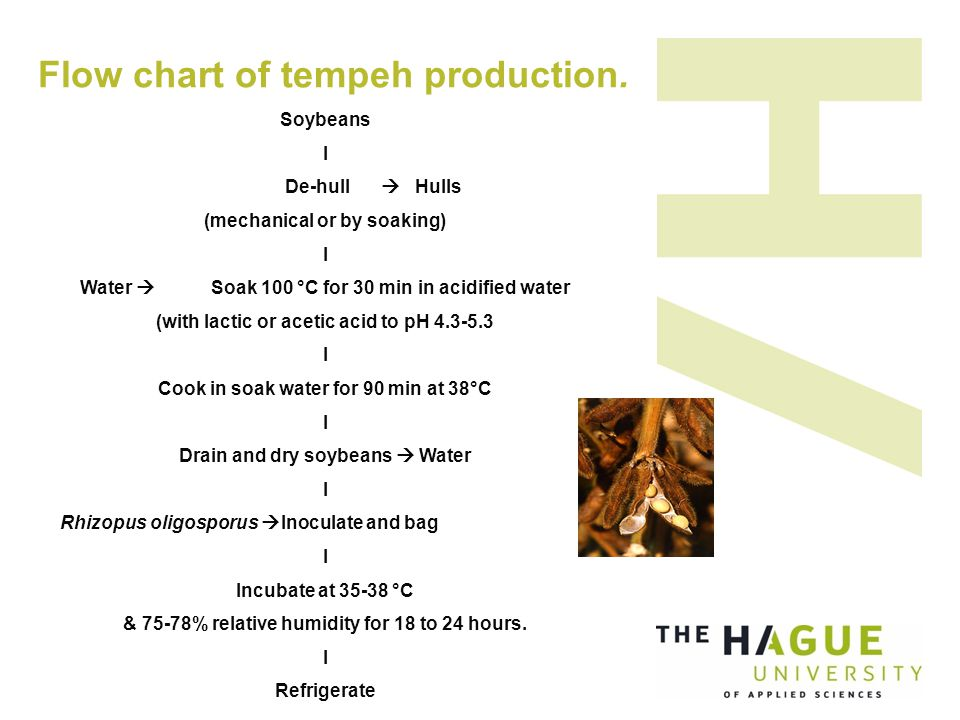 Flow chart of tempeh production.