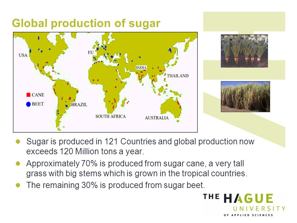 Global production of sugar Sugar is produced in 121 Countries and global production now exceeds 120 Million tons a year.