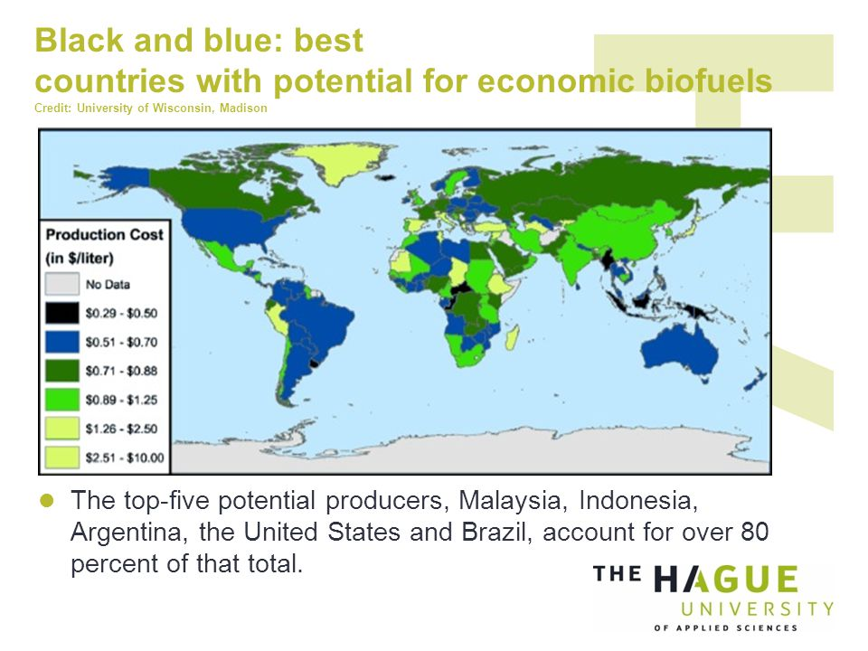 Black and blue: best countries with potential for economic biofuels Credit: University of Wisconsin, Madison The top-five potential producers, Malaysia, Indonesia, Argentina, the United States and Brazil, account for over 80 percent of that total.