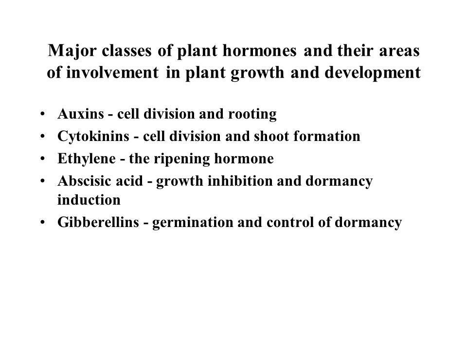 Major classes of plant hormones and their areas of involvement in plant growth and development Auxins - cell division and rooting Cytokinins - cell division and shoot formation Ethylene - the ripening hormone Abscisic acid - growth inhibition and dormancy induction Gibberellins - germination and control of dormancy