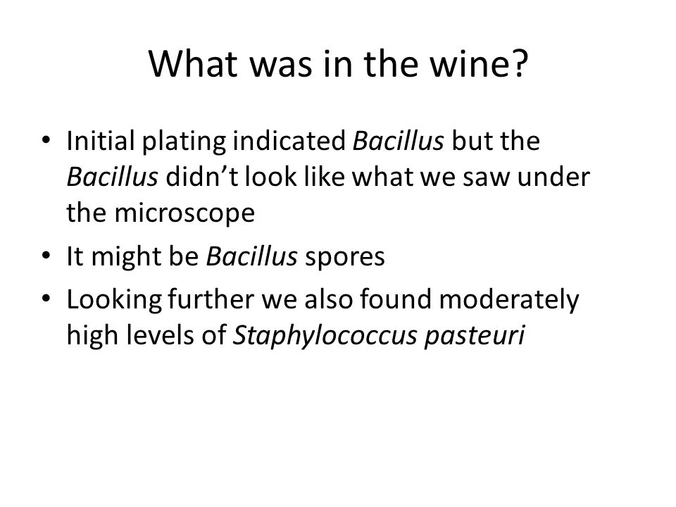 What was in the wine? Initial plating indicated Bacillus but the Bacillus didn't look like what we saw under the microscope It might be Bacillus spore