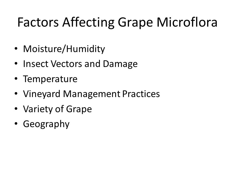 Factors Affecting Grape Microflora Moisture/Humidity Insect Vectors and Damage Temperature Vineyard Management Practices Variety of Grape Geography