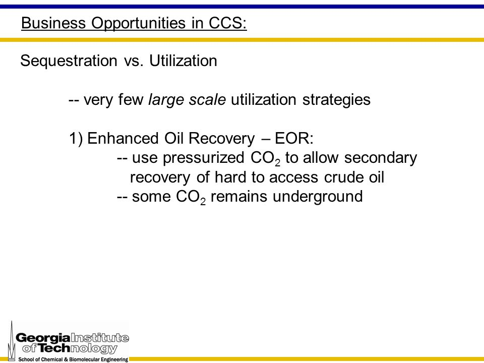Business Opportunities in CCS: Sequestration vs.