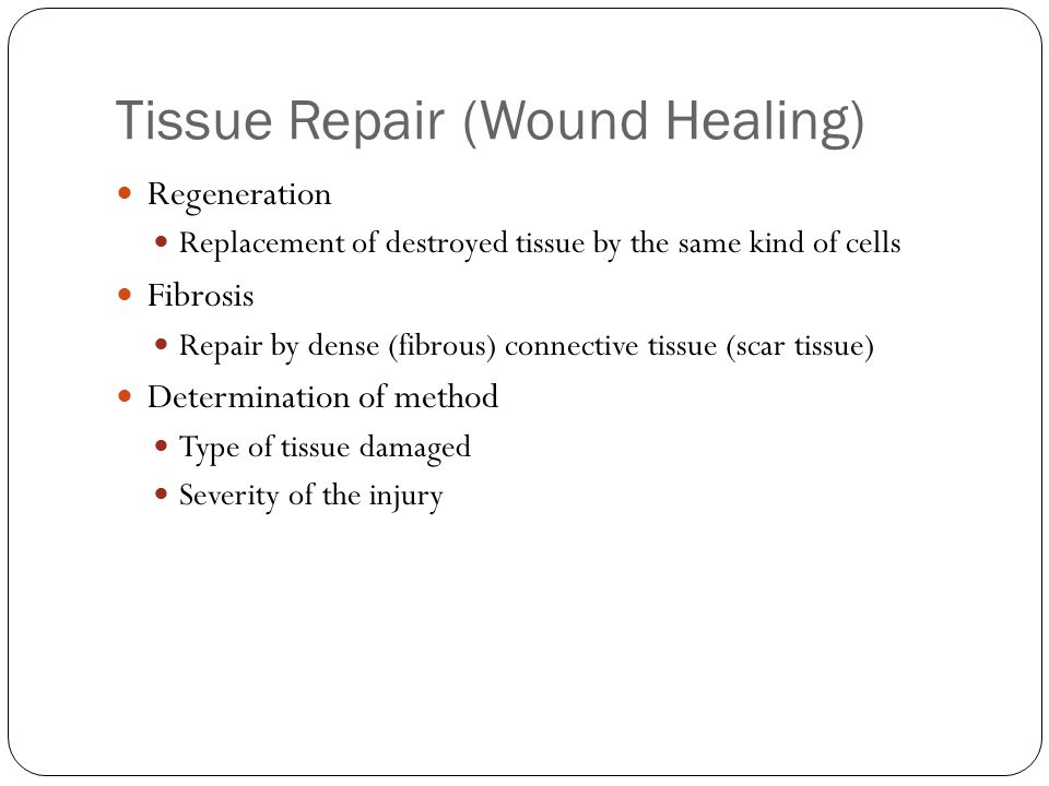 Tissue Repair (Wound Healing) Regeneration Replacement of destroyed tissue by the same kind of cells Fibrosis Repair by dense (fibrous) connective tissue (scar tissue) Determination of method Type of tissue damaged Severity of the injury