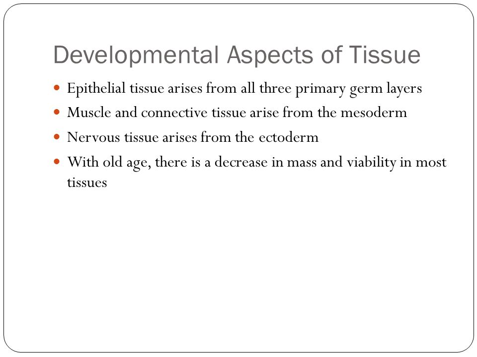 Developmental Aspects of Tissue Epithelial tissue arises from all three primary germ layers Muscle and connective tissue arise from the mesoderm Nervous tissue arises from the ectoderm With old age, there is a decrease in mass and viability in most tissues