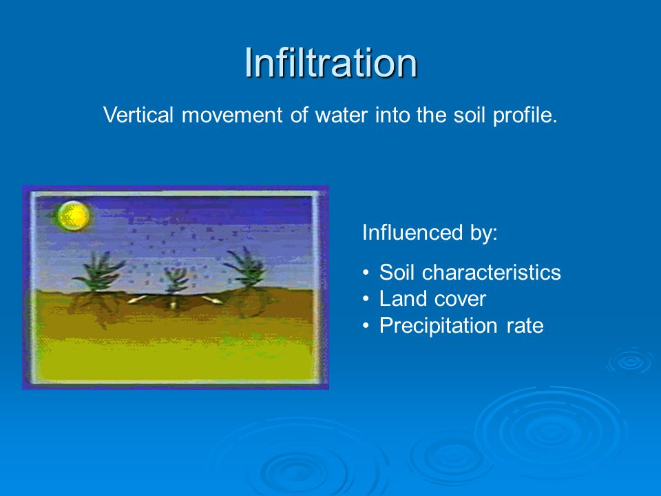 Infiltration Influenced by: Soil characteristics Land cover Precipitation rate Vertical movement of water into the soil profile.