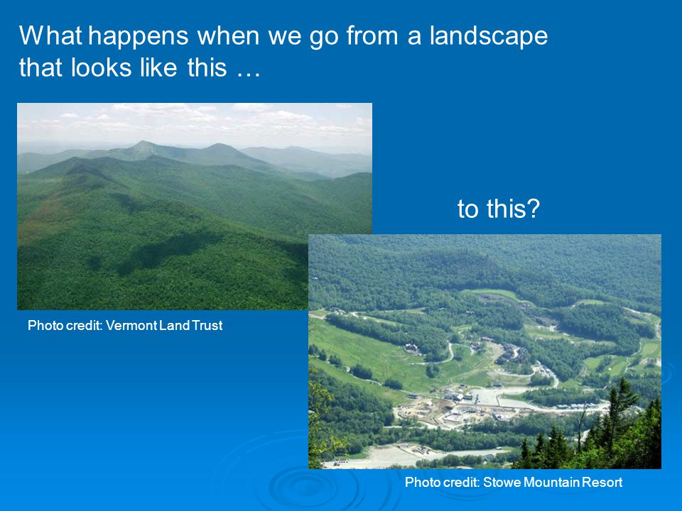 What happens when we go from a landscape that looks like this … Photo credit: Vermont Land Trust to this.