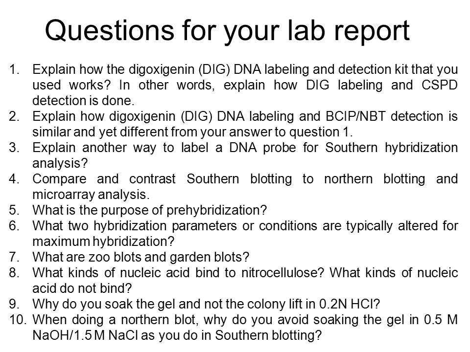 Questions for your lab report 1.Explain how the digoxigenin (DIG) DNA labeling and detection kit that you used works.