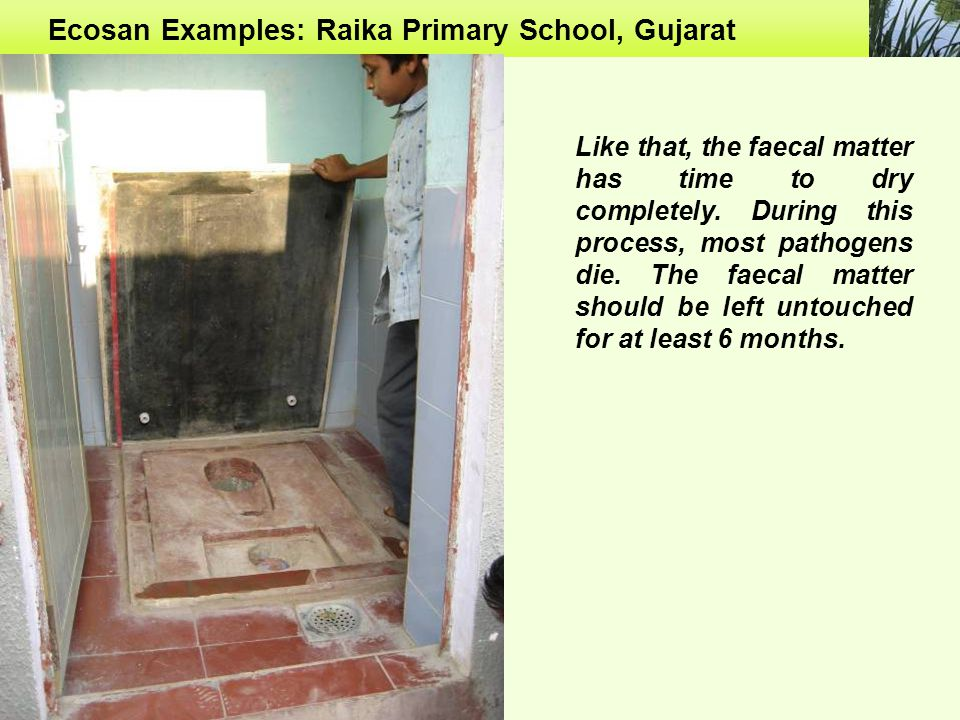 Ecosan Examples: Raika Primary School, Gujarat Like that, the faecal matter has time to dry completely.