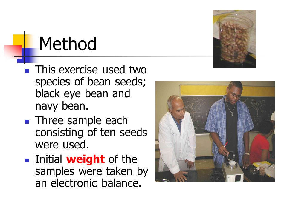 Method This exercise used two species of bean seeds; black eye bean and navy bean. Three sample each consisting of ten seeds were used. Initial weight