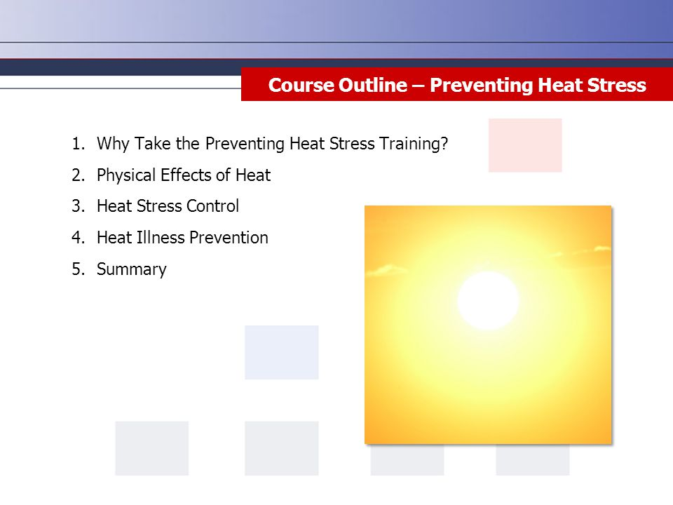 Course Outline – Preventing Heat Stress 1.Why Take the Preventing Heat Stress Training? 2.Physical Effects of Heat 3.Heat Stress Control 4.Heat Illnes