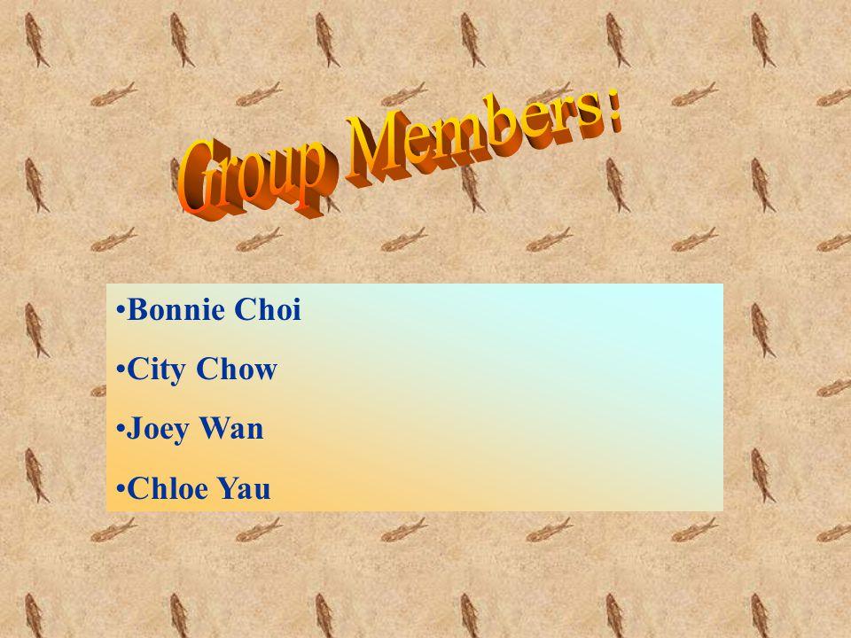 Bonnie Choi City Chow Joey Wan Chloe Yau