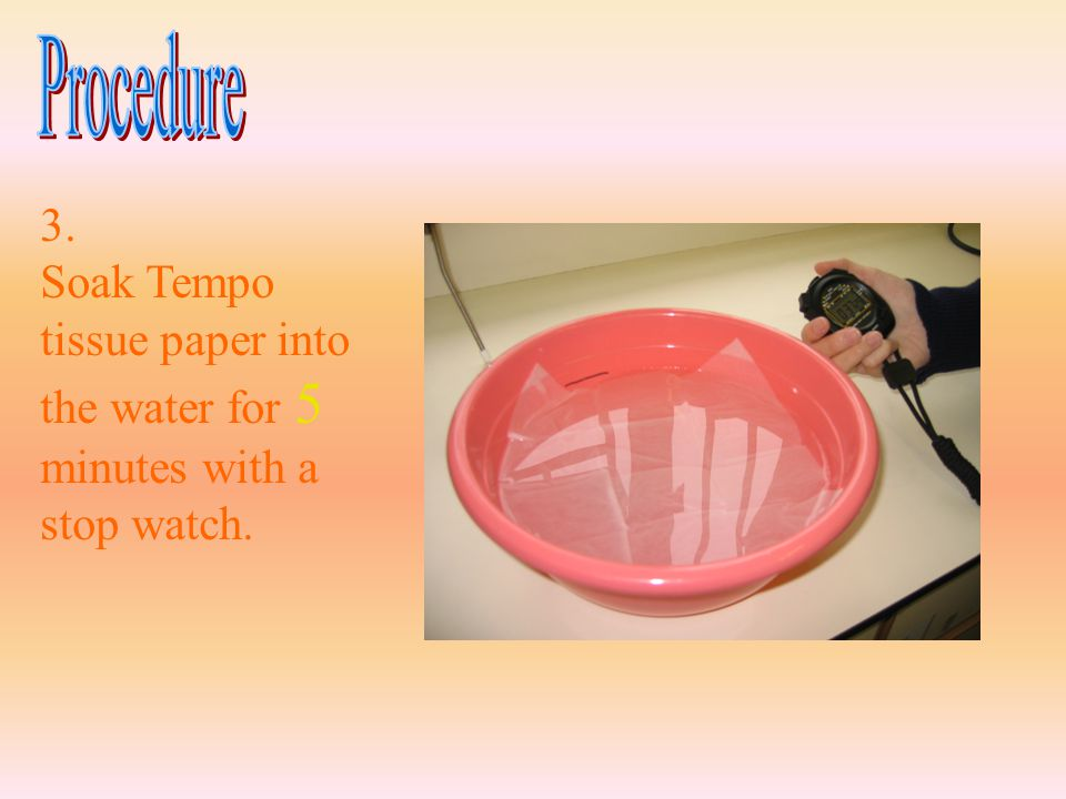 3. Soak Tempo tissue paper into the water for 5 minutes with a stop watch.