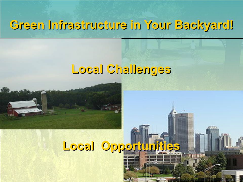 Green Infrastructure in Your Backyard! Local Challenges Local Opportunities