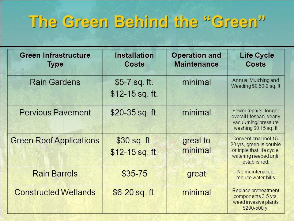 The Green Behind the Green Green Infrastructure Type Installation Costs Operation and Maintenance Life Cycle Costs Life Cycle Costs Rain Gardens$5-7 sq.
