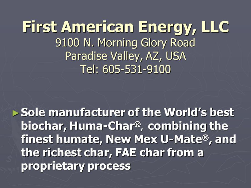 First American Energy, LLC 9100 N.