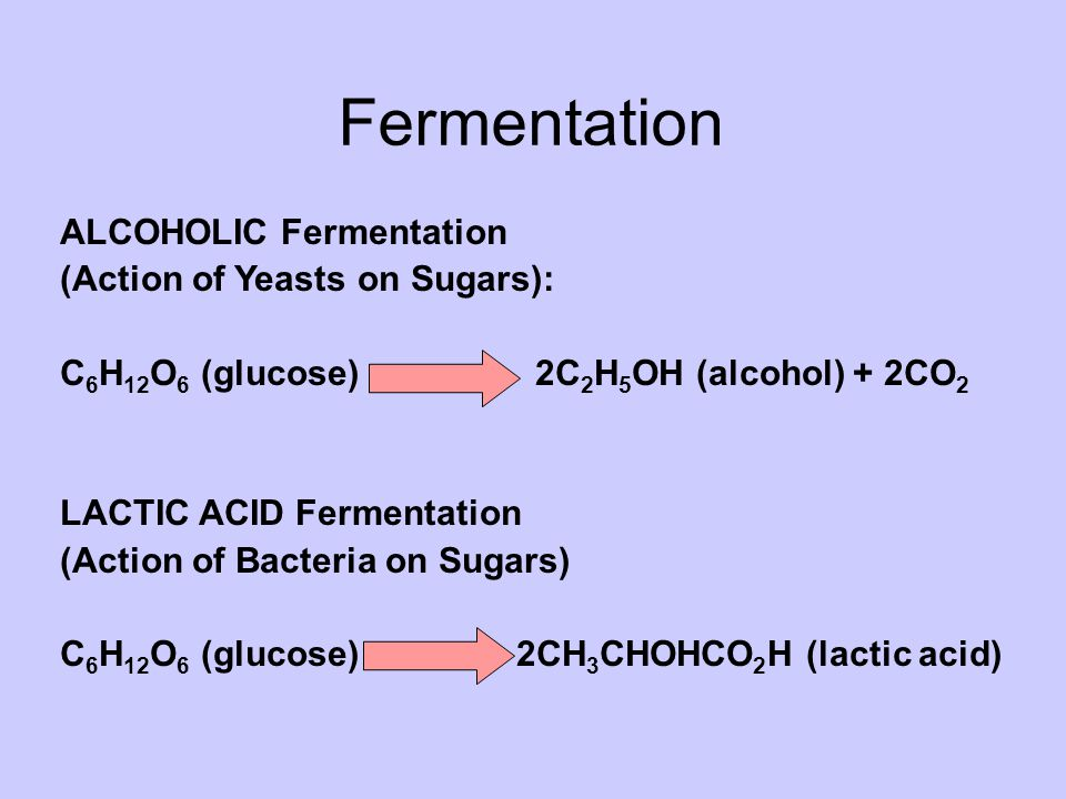 Fermentation ALCOHOLIC Fermentation (Action of Yeasts on Sugars): C 6 H 12 O 6 (glucose) 2C 2 H 5 OH (alcohol) + 2CO 2 LACTIC ACID Fermentation (Action of Bacteria on Sugars) C 6 H 12 O 6 (glucose) 2CH 3 CHOHCO 2 H (lactic acid)