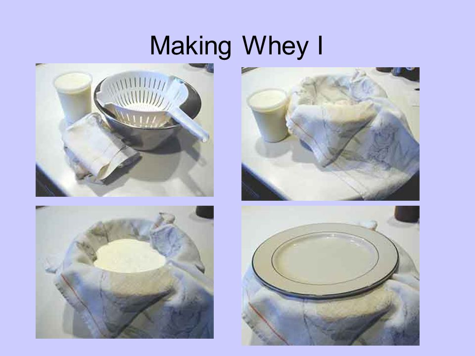 Making Whey I