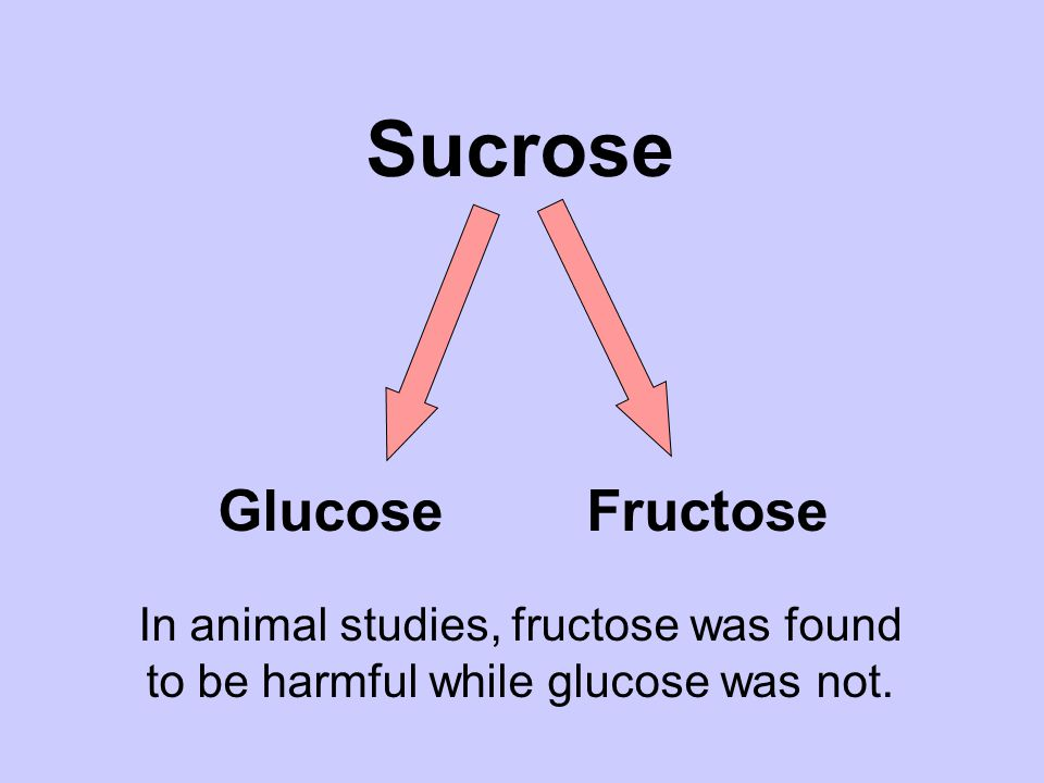 Sucrose Glucose Fructose Sucrose Breakdown In animal studies, fructose was found to be harmful while glucose was not.