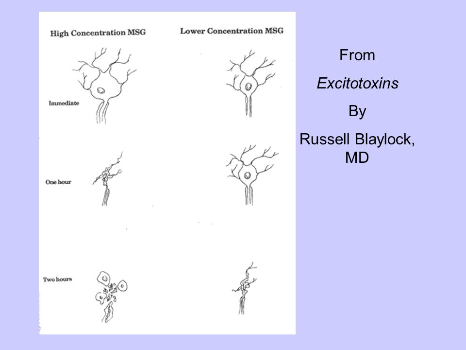 Nerve Cells From Excitotoxins By Russell Blaylock, MD