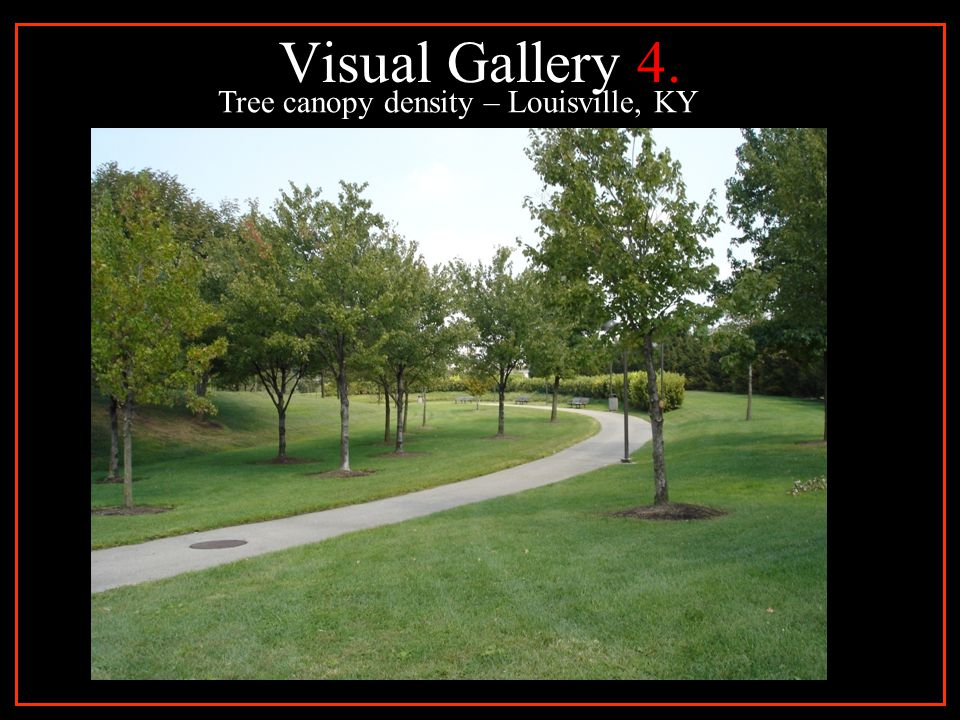 Visual Gallery 4. Tree canopy density – Louisville, KY