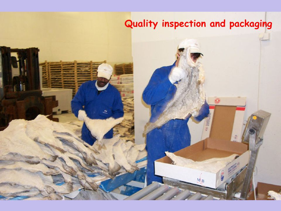 26 Quality inspection and packaging