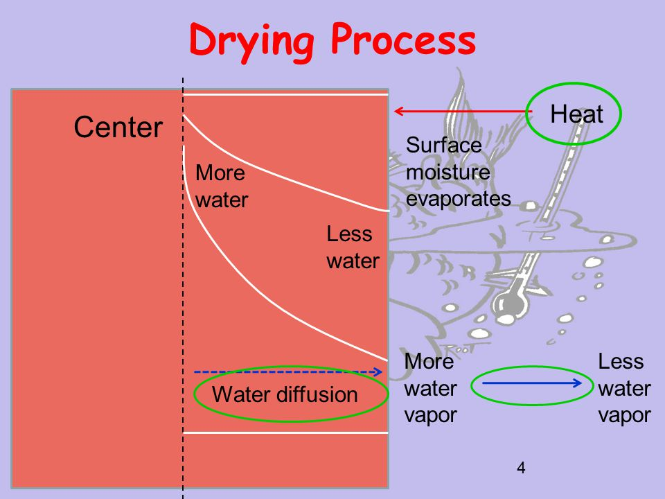 Drying Process 4 Center Heat Surface moisture evaporates More water Less water Water diffusion More water vapor Less water vapor