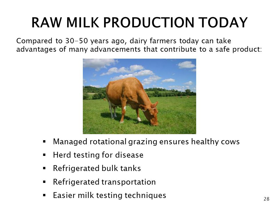 RAW MILK PRODUCTION TODAY  Managed rotational grazing ensures healthy cows  Herd testing for disease  Refrigerated bulk tanks  Refrigerated transportation  Easier milk testing techniques 28 Compared to 30-50 years ago, dairy farmers today can take advantages of many advancements that contribute to a safe product: