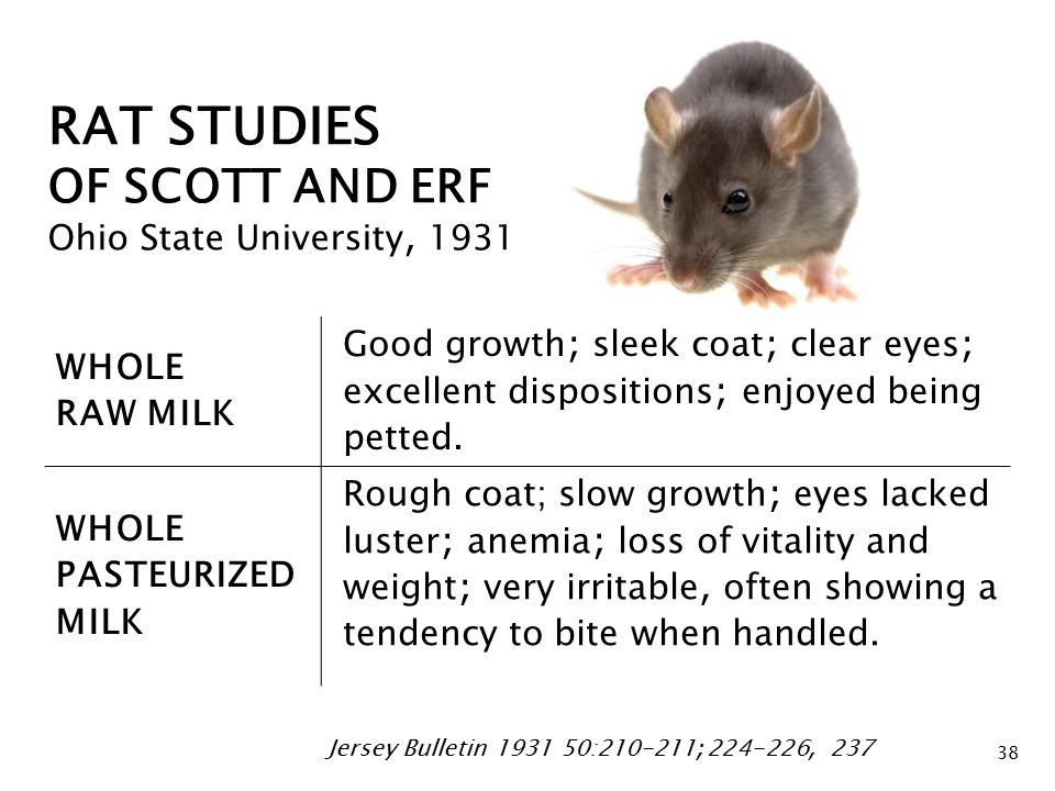 RAT STUDIES OF SCOTT AND ERF Ohio State University, 1931 WHOLE RAW MILK Good growth ; sleek coat ; clear eyes ; excellent dispositions ; enjoyed being petted.