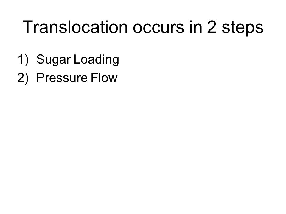 Translocation occurs in 2 steps 1)Sugar Loading 2)Pressure Flow