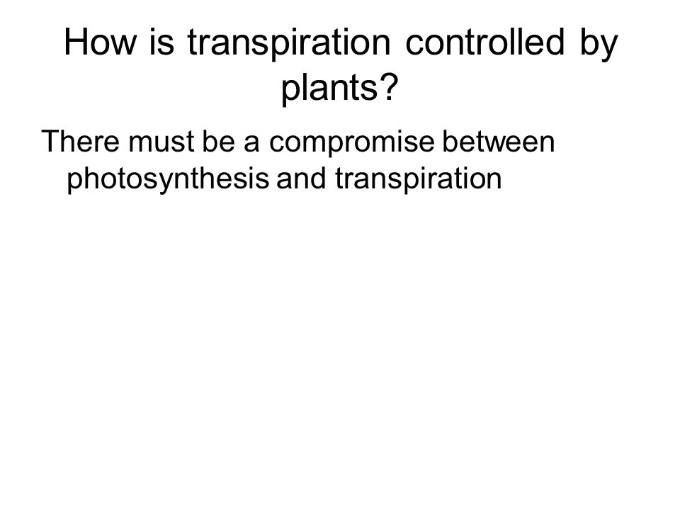 How is transpiration controlled by plants.