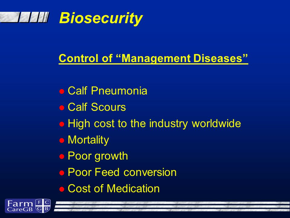 Control of Management Diseases Calf Pneumonia Calf Scours High cost to the industry worldwide Mortality Poor growth Poor Feed conversion Cost of Medication