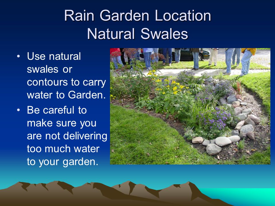 Rain Garden Location Natural Swales Use natural swales or contours to carry water to Garden.