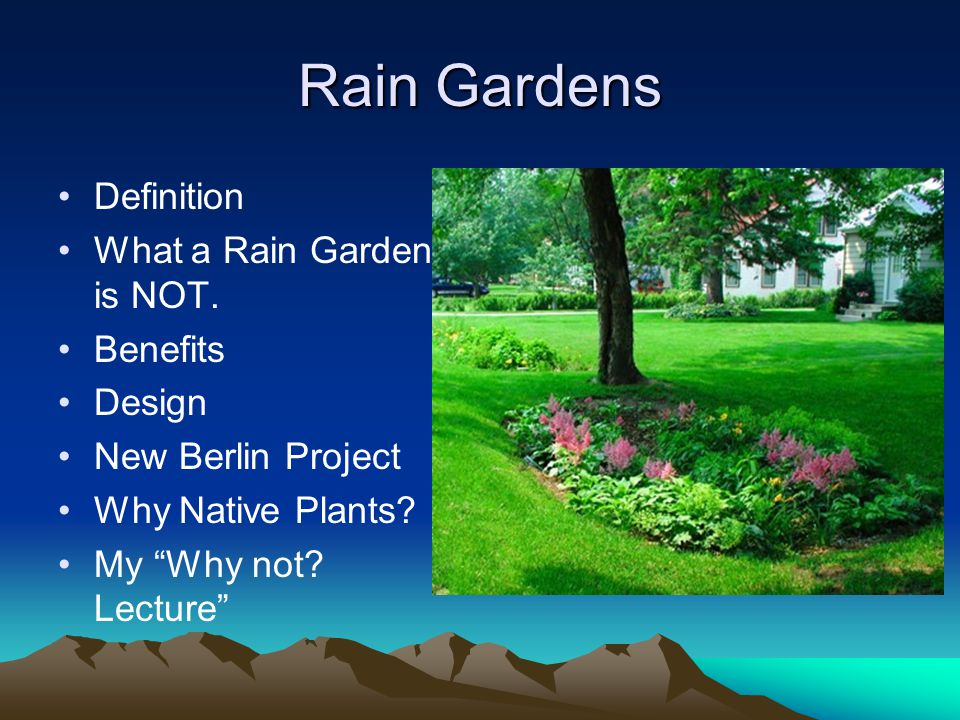 Rain Gardens Definition What a Rain Garden is NOT.