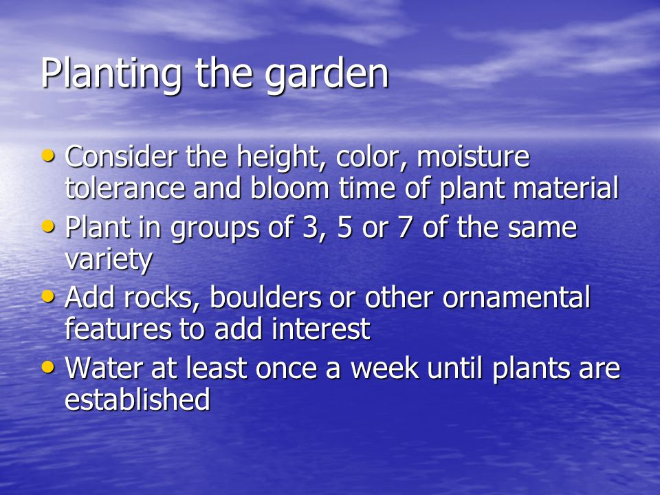 Planting the garden Consider the height, color, moisture tolerance and bloom time of plant material Consider the height, color, moisture tolerance and bloom time of plant material Plant in groups of 3, 5 or 7 of the same variety Plant in groups of 3, 5 or 7 of the same variety Add rocks, boulders or other ornamental features to add interest Add rocks, boulders or other ornamental features to add interest Water at least once a week until plants are established Water at least once a week until plants are established