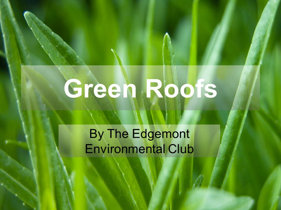 Green Roofs By The Edgemont Environmental Club