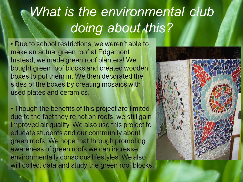 What is the environmental club doing about this.