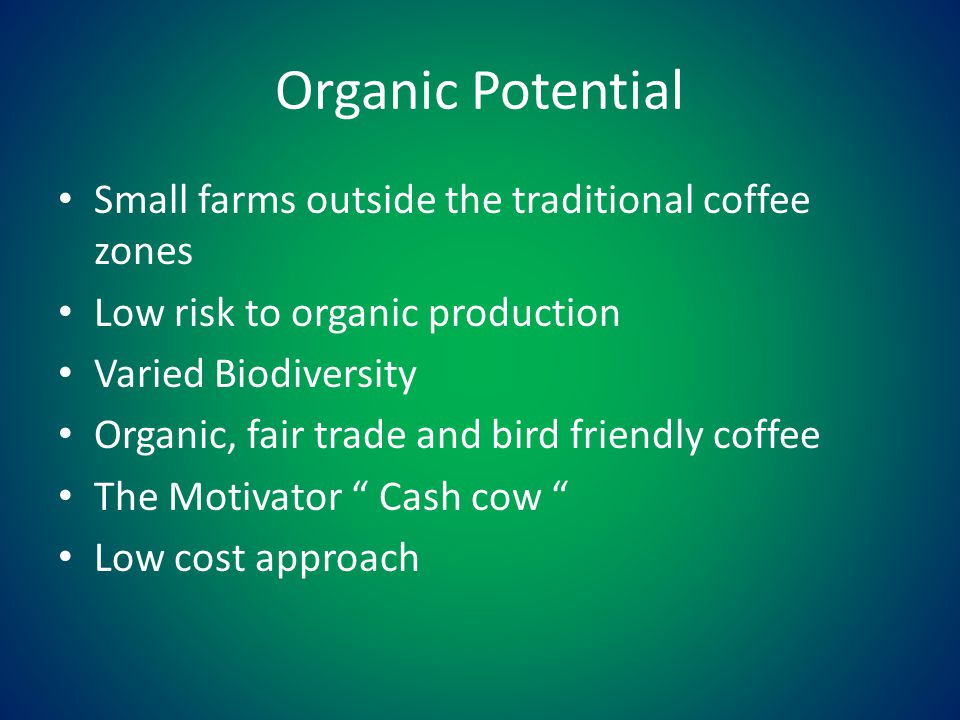Organic Potential Small farms outside the traditional coffee zones Low risk to organic production Varied Biodiversity Organic, fair trade and bird friendly coffee The Motivator Cash cow Low cost approach