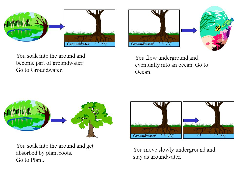 Groundwater You soak into the ground and become part of groundwater.