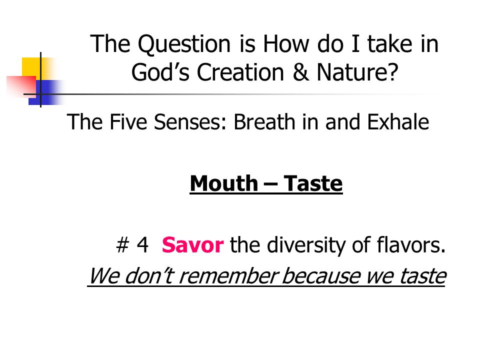 The Question is How do I take in God's Creation & Nature? The Five Senses: Breath in and Exhale Mouth – Taste # 4 Savor the diversity of flavors. We d