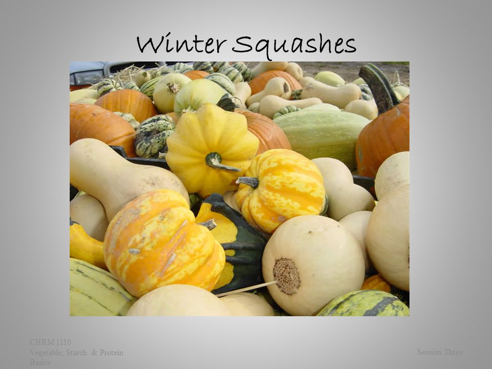Winter Squashes Session Three CHRM 1110 Vegetable, Starch & Protein Basics