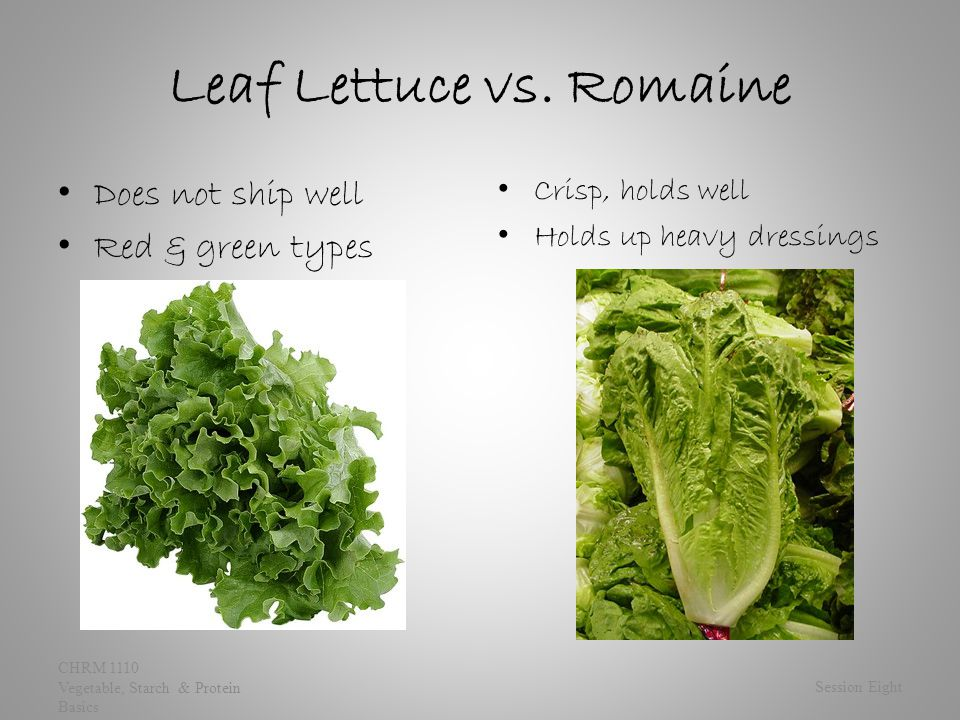 Leaf Lettuce vs. Romaine Does not ship well Red & green types Crisp, holds well Holds up heavy dressings Session Eight CHRM 1110 Vegetable, Starch & P