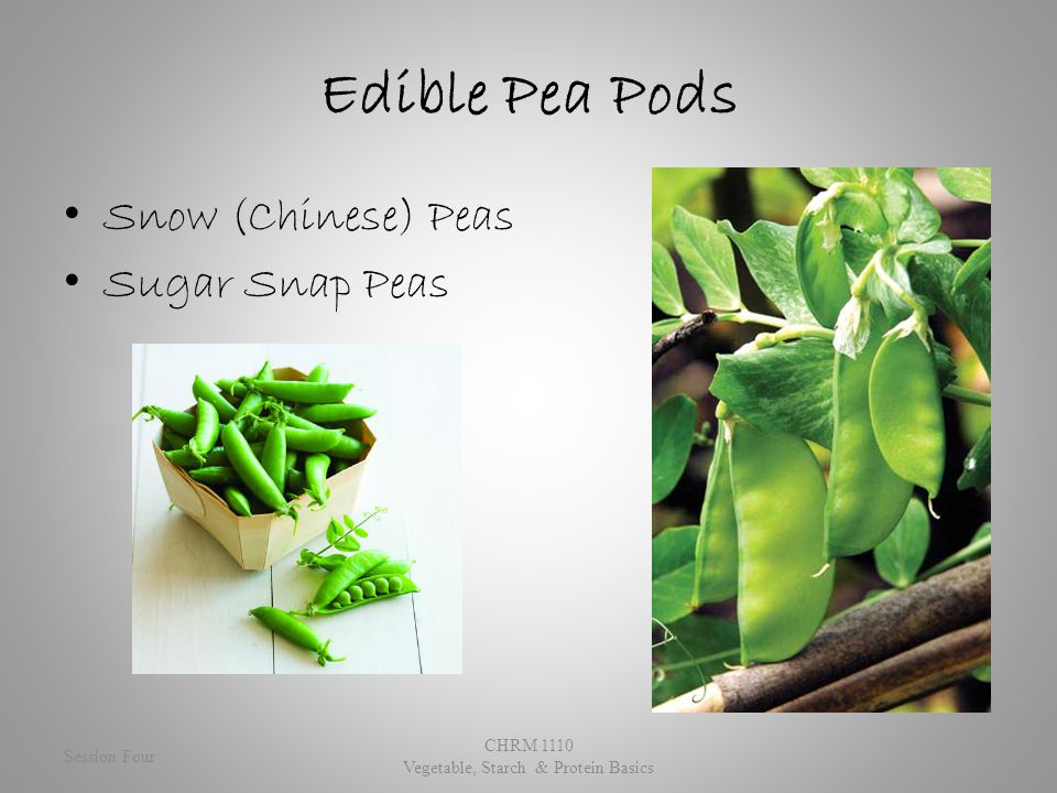 Edible Pea Pods Snow (Chinese) Peas Sugar Snap Peas Session Four CHRM 1110 Vegetable, Starch & Protein Basics