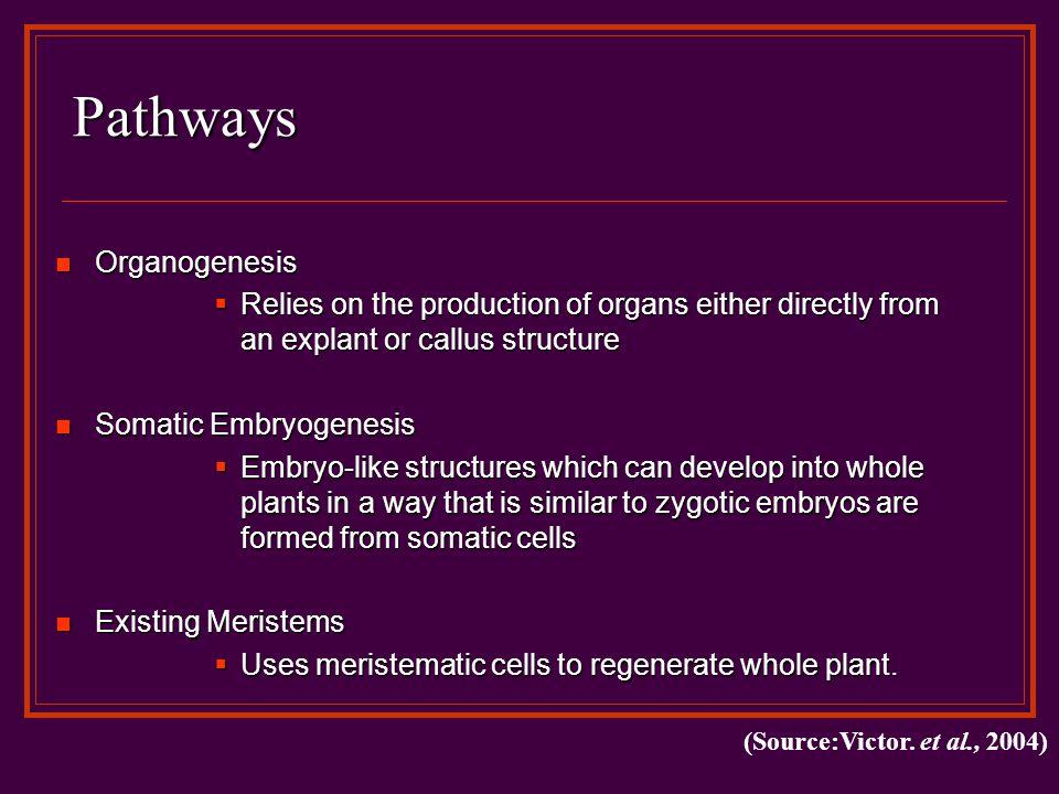 Steps in Organogenesis 1.Phytohormone Perception 2.