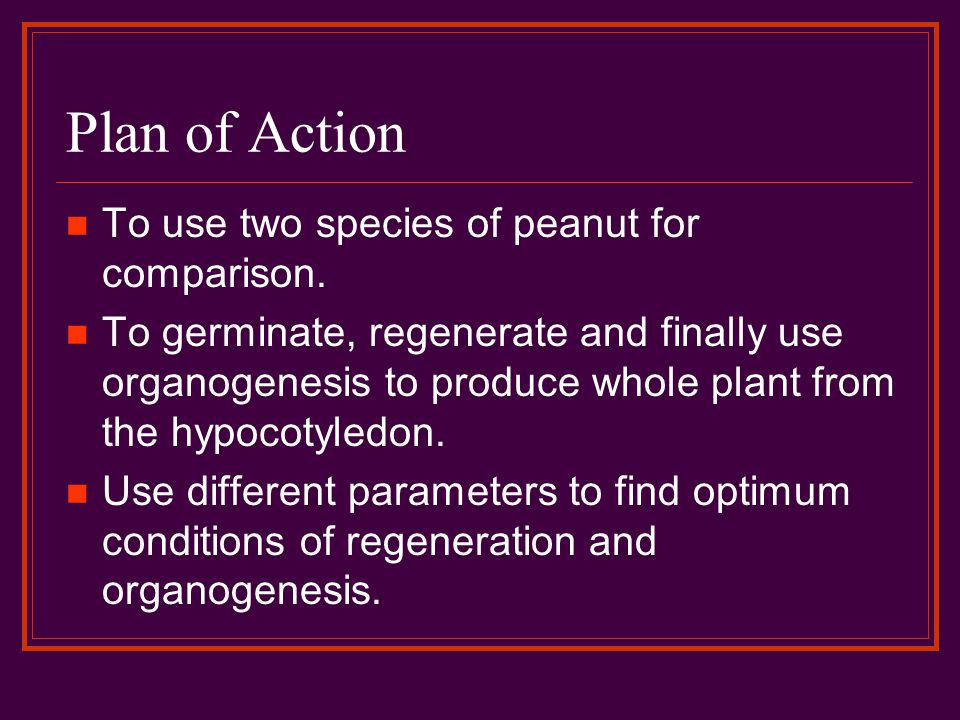 Plan of Action To use two species of peanut for comparison.
