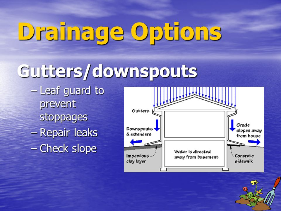Gutters/downspouts –Leaf guard to prevent stoppages –Repair leaks –Check slope