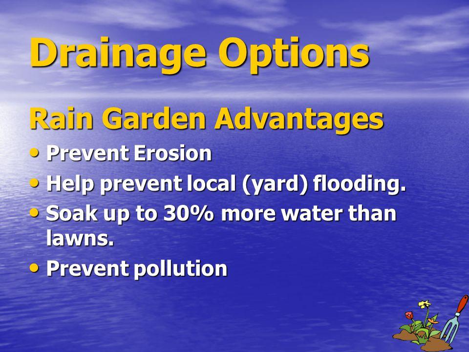 Drainage Options Rain Garden Advantages Prevent Erosion Prevent Erosion Help prevent local (yard) flooding.