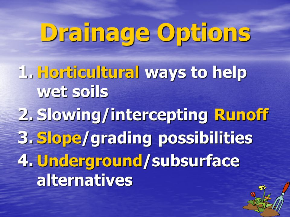 Drainage Options 1.Horticultural ways to help wet soils 2.