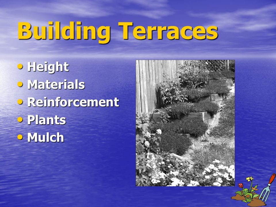Building Terraces Height Height Materials Materials Reinforcement Reinforcement Plants Plants Mulch Mulch