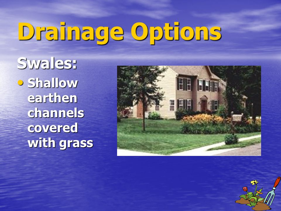 Drainage Options Swales: Shallow earthen channels covered with grass Shallow earthen channels covered with grass